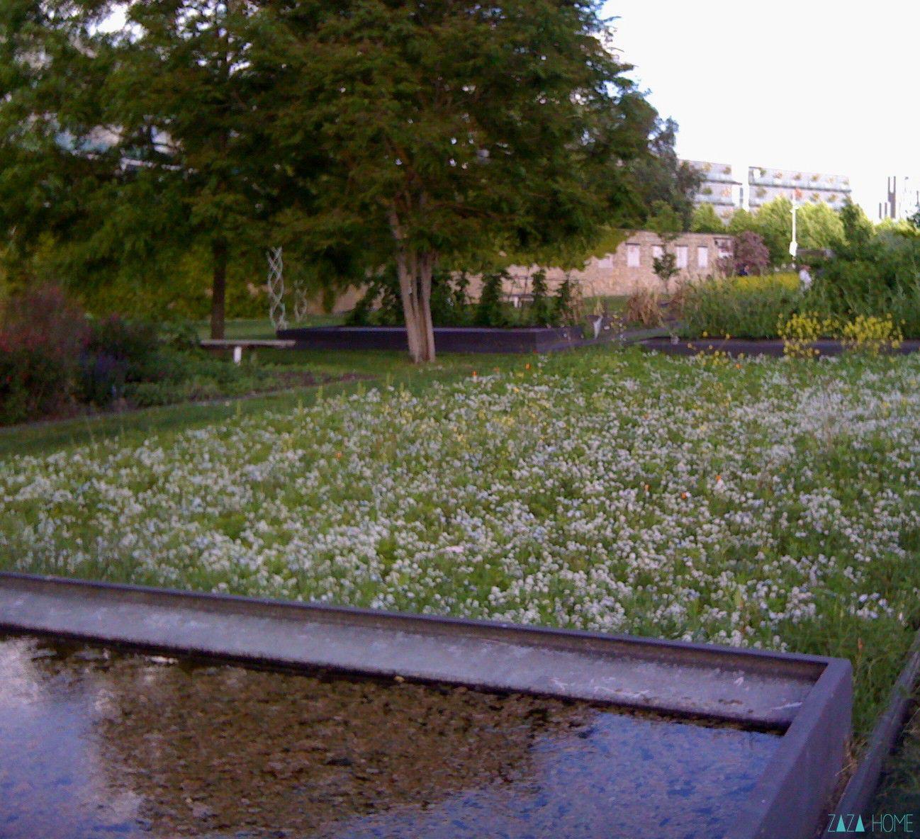 Jardin botanique bordeaux bastide zaza home for Appartement bordeaux jardin botanique