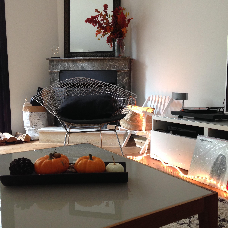 coloquinte_decoration_blog_bordeaux
